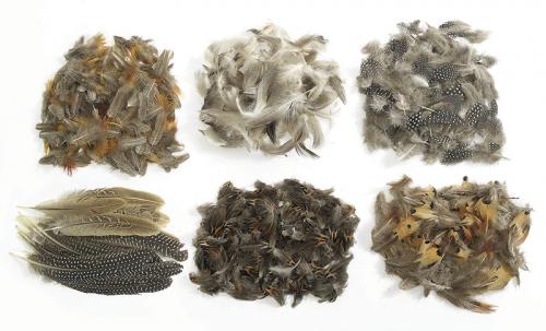 Pack escolar plumas naturales