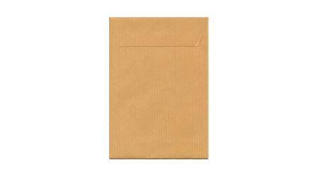 Bolsas Postal Prolongado